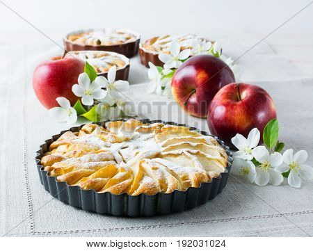 Homemade pie with red apples and apple tree branch close up.