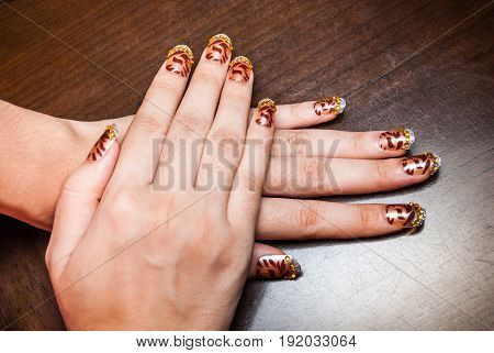 Closeup to Beautiful Nail Painted and Decorated