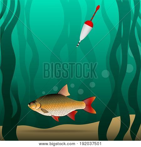 Fishing. Under the water. The fish grabbed the bait and pulls the fishing tackle. River bottom and algae. Vector illustration.