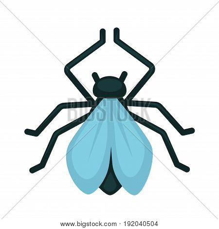Blue-winged wasp isolated on white close up vector illustration in flat design. Small animal in dark color with many thin legs and two light blue wings. Scolia dubia great fighter with garden pests