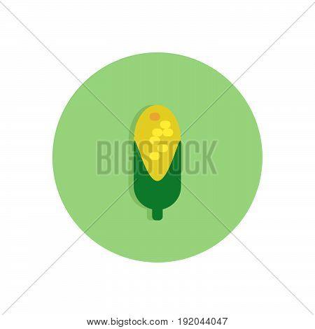 Corn Flat Icon. Round Colorful Button, Maize Circular Vector Sign, Logo Illustration.