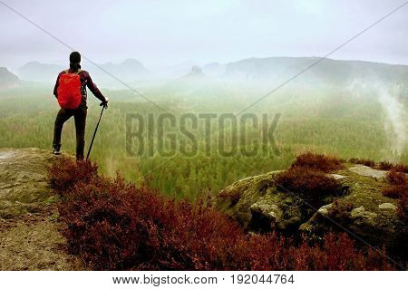 Man Hiker With Trekking Poles  And Red Backpack  On Rock. Old Heather Bushes Grows In Rock