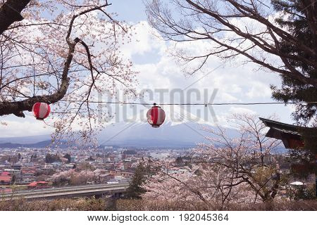 Mt Fuji with cherry blossom sakura in spring season on the sky background the most famous place in Japan to travelingFujiyoshida Japan