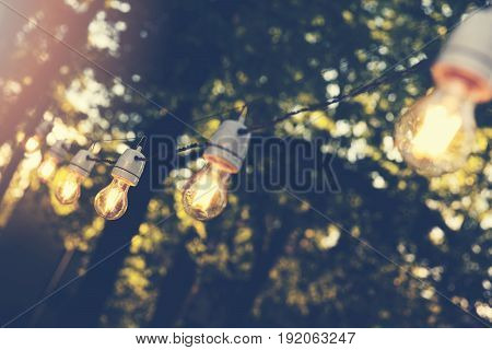 hanging decorative string lights for outdoor party