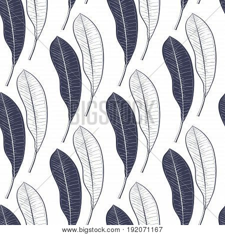 Seamless pattern of a lot of mango leaves isolated on white background. Hand drawing line art.