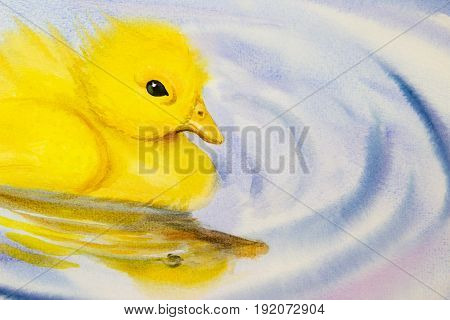 Painting art watercolor landscape original colorful of little yellow duck and emotion on water background