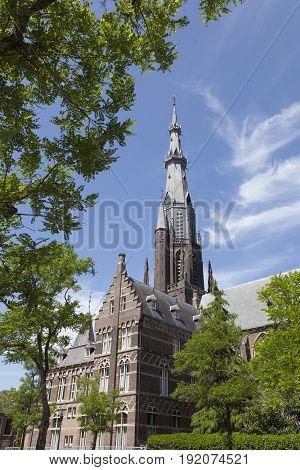 boniface church and blue sky in leeuwarden capital of friesland on sunny summer day seen through trees