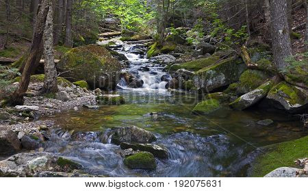 River Sream at Mount Washinton via Ammonoosuc ravine trail in Coos County New Hampshire.