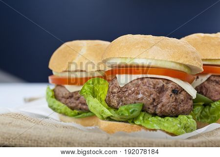 Giant Homemade Burger Classic American Cheeseburger On Sack