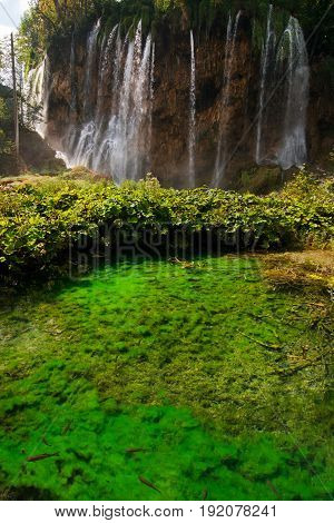 Waterfall And Pond With Fish In National Park Plitvice Lakes, Cr