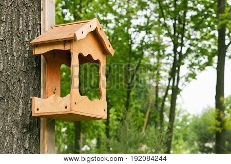 Handmade wooden birdhouse on a tree in the forest and park