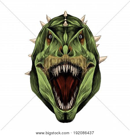 the dinosaur head is symmetrical looks right with open mouth skin green color sketch vector graphics color picture