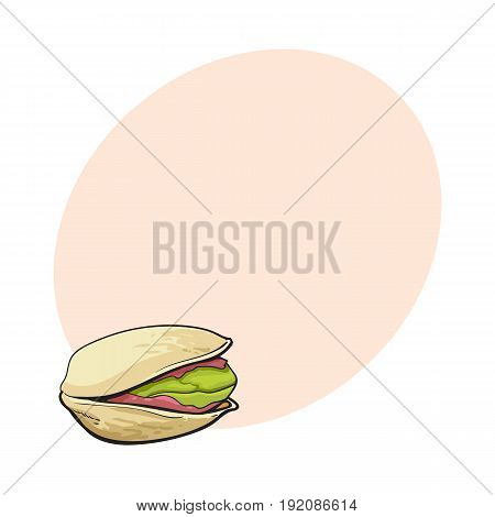Single pistachio nut, hand drawn sketch style vector illustration with space for text. Realistic hand drawing of pistachio nut, vegetarian snack