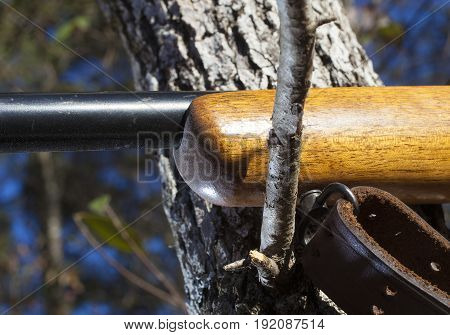 Method of steadying a rifle for a long shot across a tree branch