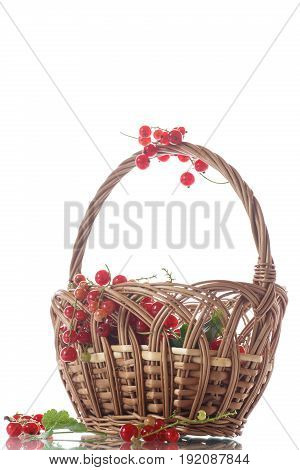 Ripe red currant in a basket on a white background