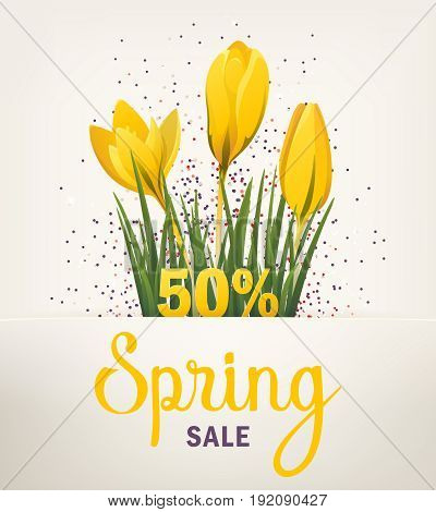 Spring banner. Big Offer Sale poster for Mothers Day, Spring, Summer. Banner with flowers, yellow crocus. Vector illustration EPS10 for flyer design, online shopping, advertising, magazine, website