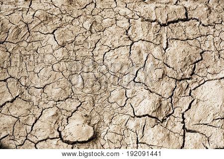 Dry Texture