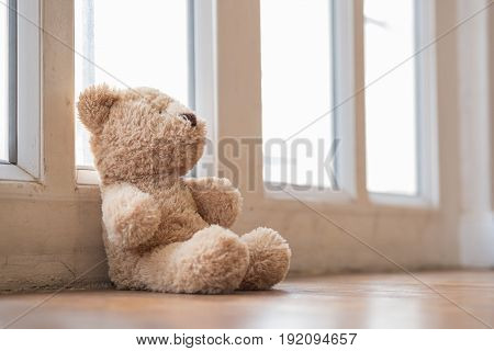 Teddy bear sit alone in the room