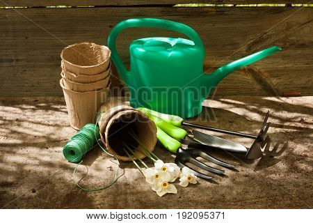 Garden Sets: Watering Can Peat Pots Fork Scoop Hoe Roll Rope And Flowers Narcissus In Sunny Day On Old Wooden Gray Board.