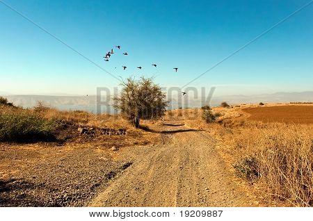 Galilee. North Israel .