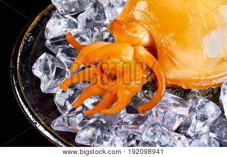 Closeup of a cooked cuttlefish tentacles on ice..