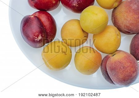 Peach, Nectarine And Apricot On White Plate