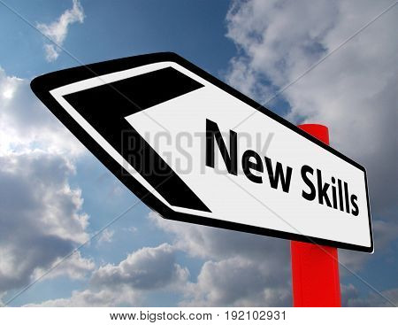 new skills road sign . 3d rendered illustration