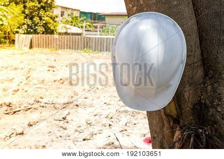 Hat safety white color on tree in site construction