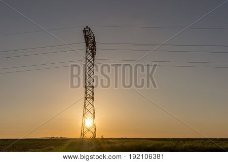 High voltage lines and one pylon in sunrise