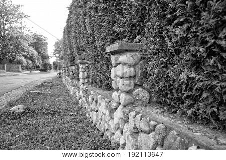 A Hedge and little stone wall enclose the property
