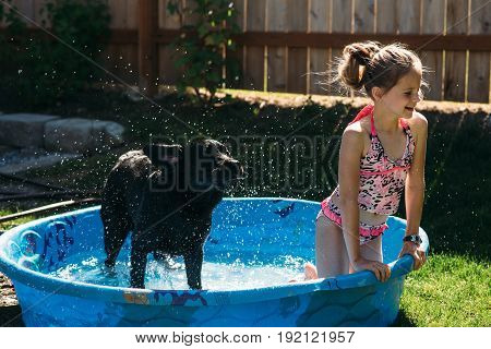 Dog shaking in a kiddie pool with a young girl.