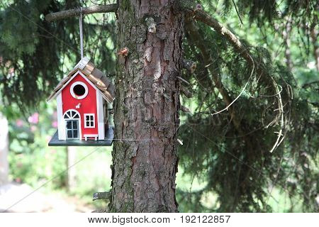 Red bird house hanged on the tree