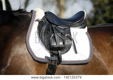 Beautiful sport saddle closeup on show jumping training
