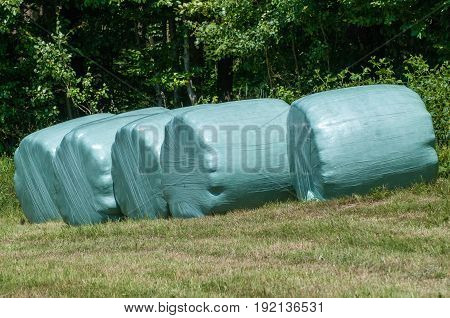 Row Of Plastic Wrapped Hay Bales On A Green Field