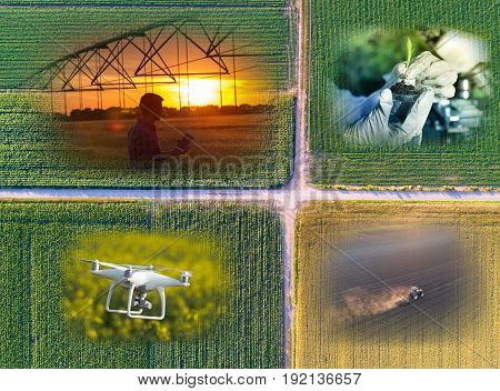 Abstract Agricultural Collage