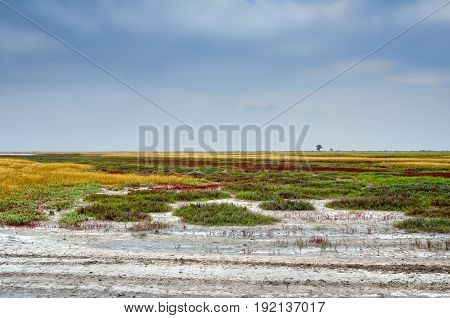 Wide Prairies Against The Cloudy Sky Background