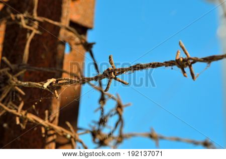 Barbed wire at times reminiscent of concentration camps