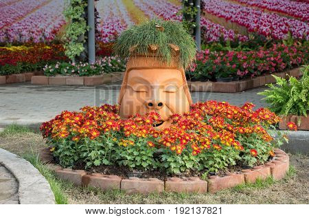 Red Chrysanthemums Daisy Flowers Bed With Statue Head Decoration