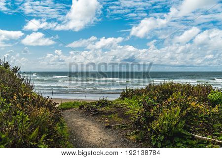 Image of a trail leading to the ocean.