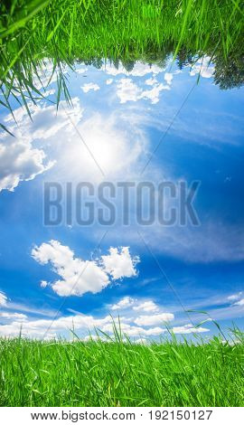 panorama of beautiful summer sky and green field