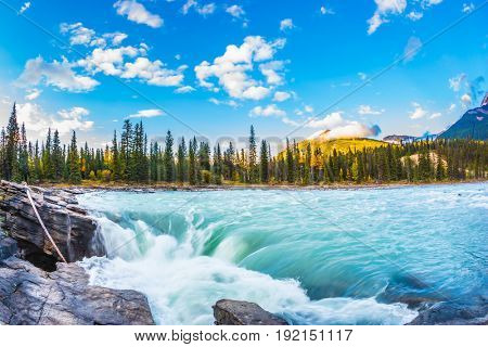 Travel to Jasper Park, Canada. The full-water bubbling waterfall of Athabasca. Clear autumn evening at sunset. The concept of extreme and ecological tourism
