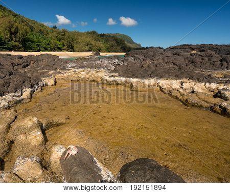 Rocks and rockpools lead into the ocean at Lumahai Beach in Kauai in Hawaiian islands