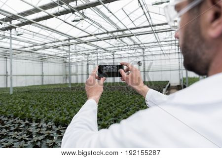 Cropped image of young man standing in greenhouse near plants make photo by phone.