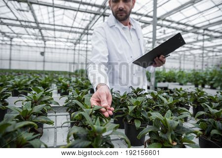 Cropped image of young man standing in greenhouse near plants holding clipboard.
