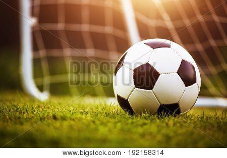 Closeup soccer ball on green grass at sunset