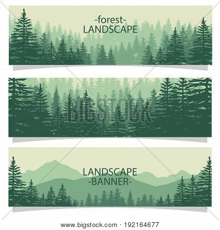 Fir trees silhouette banners. Pine plant wood branch natural forest silhouette.