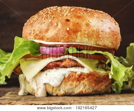Delicious Burger With Onion Close-up