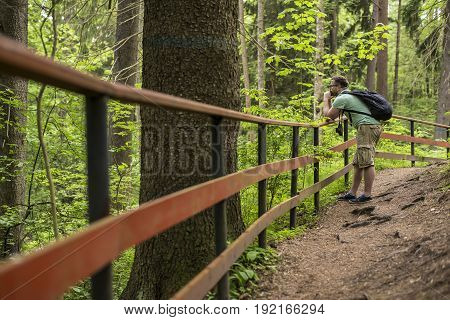 Tourist with a backpack and retro camera admiring the beauty of summer forest standing on the path and putting his hands on the railings.