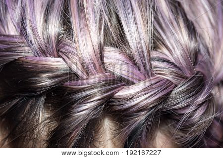 braid of a purple hair . A photo