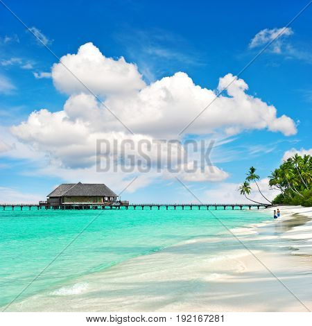 Tropical island beach with perfect blue sky. Nature landscape